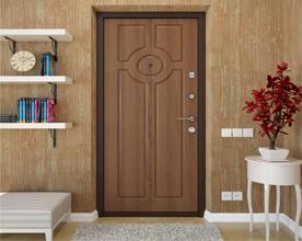 dveri-s-otdelkoy